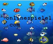 Couple fishes gratis spiele