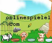 Hungry animals Tier online spiele